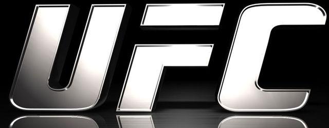 La jugabilidad de UFC se mostrar� por primera vez en la Gamescom 2013